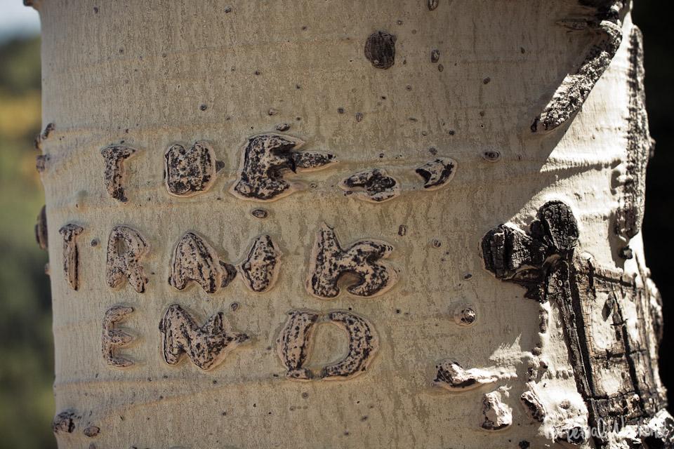 the trail's end aspen carving graffiti