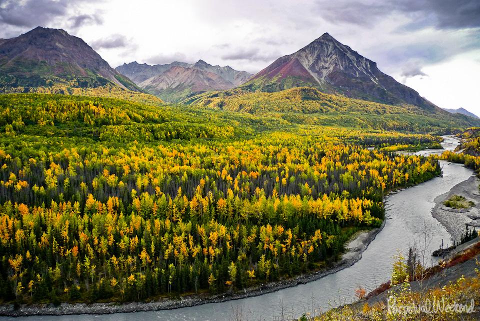 chugach fall leaves color