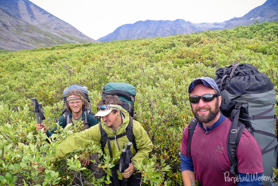 bushwacking bush push in alaska